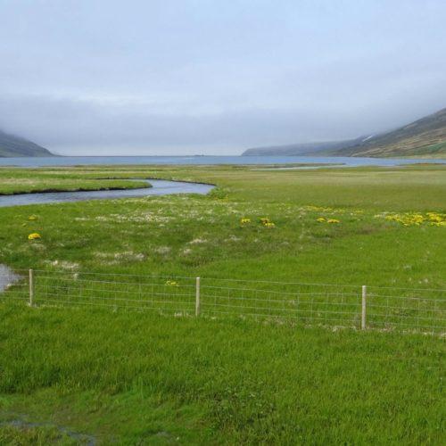 Islandzka majówka bez wychodzenia z domu – filmy, seriale i książki